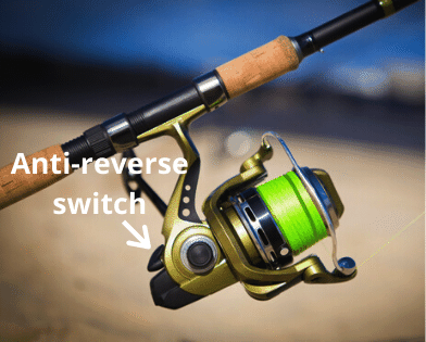 Photo of spinning reel with the anti-reverse switch labelled