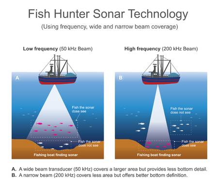 Diagram of sonar technology for finding fish