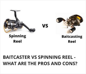 Baitcaster vs spinning