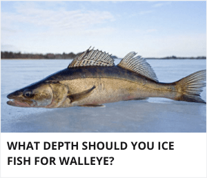 At what depth should you ice fish for walleye