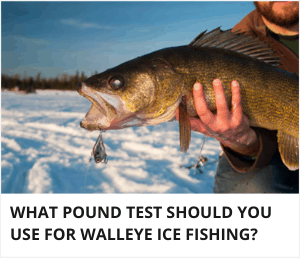 What pound test line should you use for walleye ice fishing