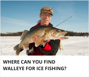 Where can you target walleye ice fishing?