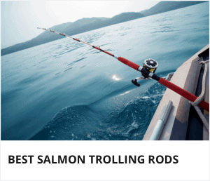 Best salmon trolling rods