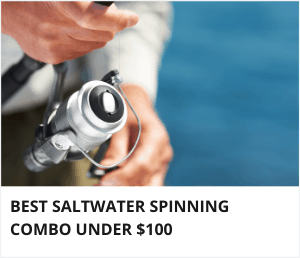 Best saltwater spinning combo under 100