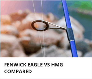 Fenwick Eagle Vs HMG