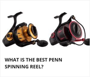 Best Penn spinning reel