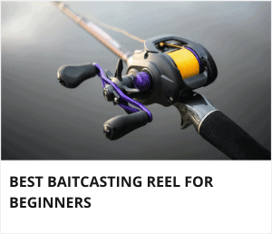 Best baitcasting reel for beginners