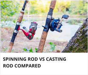 Spinning rod vs casting rod