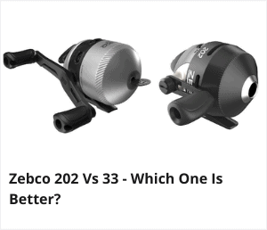 Zebco 202 vs 33