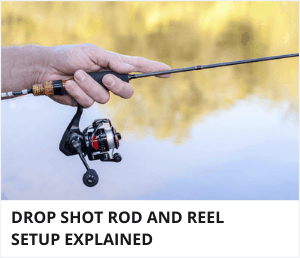 Drop shot rod and reel setup