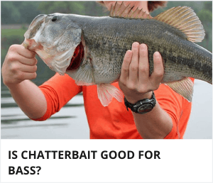 Is chatterbait good for bass