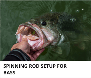 Spinning rod setup for bass