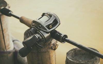 Topwater rod and reel setup