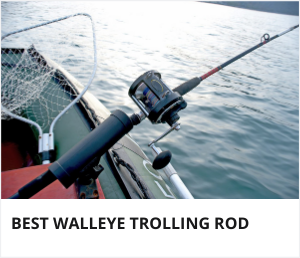 Best walleye trolling rod