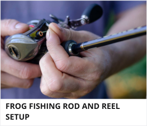 Frog fishing setup