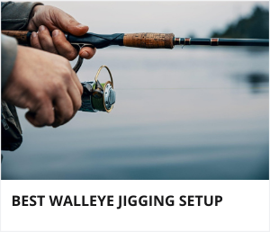 Walleye jigging setup