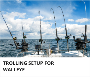 Walleye trolling setup