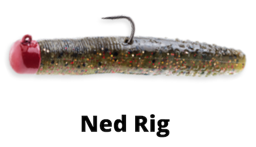 Ned Rig for walleye