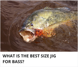 What size jig for bass