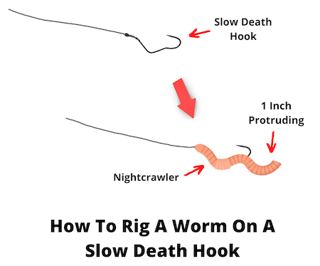 How to rig a worm on a slow death hook