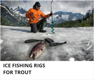 Ice fishing rigs for trout