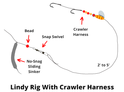 Lindy rig with crawler harness diagram