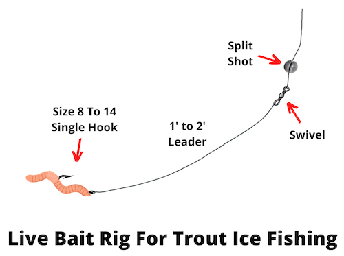 Live bait rig for trout ice fishing