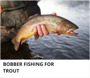Bobber fishing for trout
