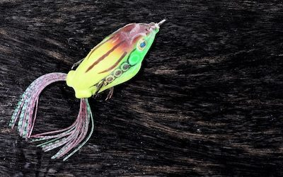 Best color frog for bass fishing