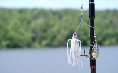 When to use spinnerbait